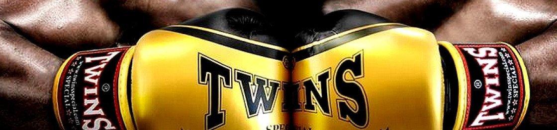 Gant de Boxe Twins