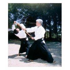 Hakama Aikido Importation Asie bleu