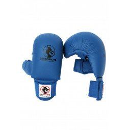 Gants Karate Bleu