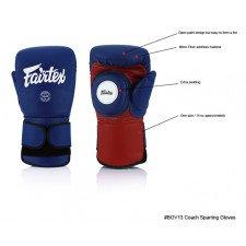 Gants de boxe Fairtex pour Coach BGV13