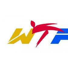 Mitaines Taekwondo WTF