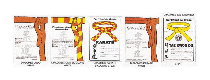 Certificats de Ceinture (karaté)
