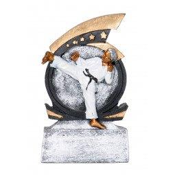 Recompense Sportive: Trophée Karaté RS757