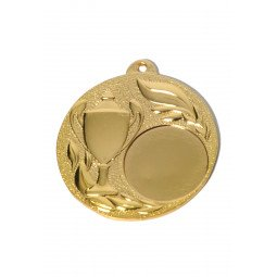 Recompense Sportive: Médaille OR M561